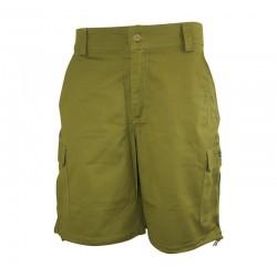 PANTALONES CORTOS-'Eddy' Shorts - Green