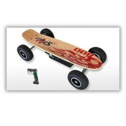 Electric Skateboard Street Spirit 800 W